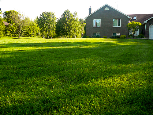 Lawns of Brockville, ON