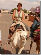 G On The Camel